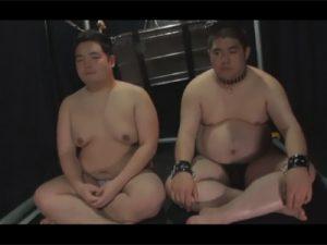【ゲイ動画ビデオ】ぽっちゃり系たちの肉と肉のハードなぶつかり合いが見られてエロ姿も楽しめる!